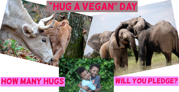 Get Ready for 'Hug a Vegan' Day!