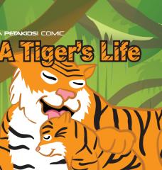 'A Tiger's Life' Comic Book