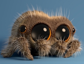 Have You Met Lucas the Spider?
