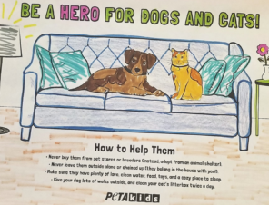 FREE Coloring Sheet: 'Be a Hero for Dogs and Cats'