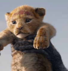 PETA Kids Is Just as Excited as You Are for Disney's 'Lion King' Remake