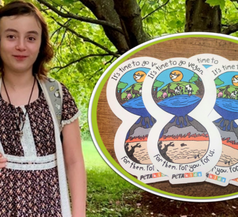An 11-Year-Old Helps Animals and the Planet With Stickers