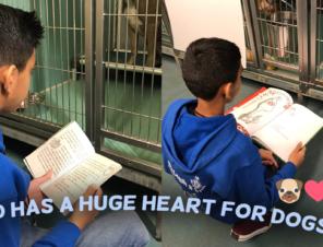 PETA Kids Awards Student for Volunteering to Help Dogs on Weekends