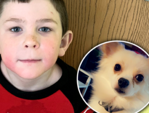 5-Year-Old 'Hero to Animals' Saves His Family's Dog From House Fire