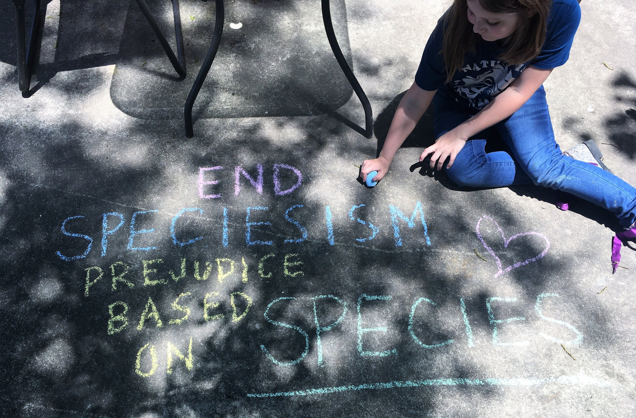 End speciesism chalk art