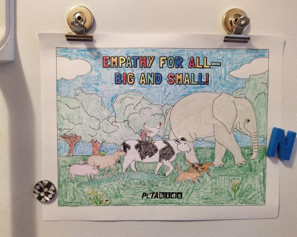'empathy for all animals' coloring sheet on a fridge