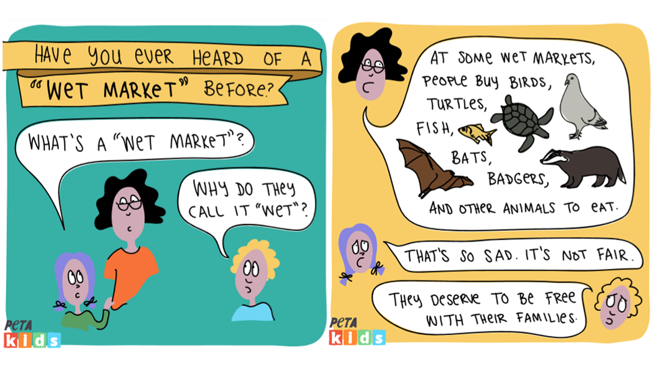 Wet Market Featured Image