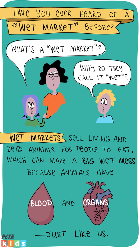 Wet market comic strip