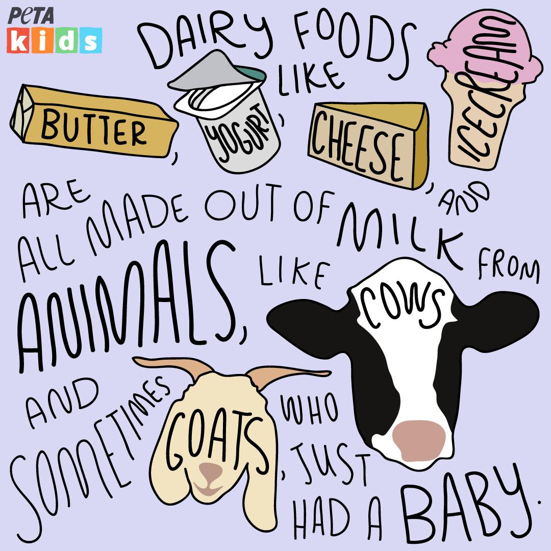 Dairy Comic Strip