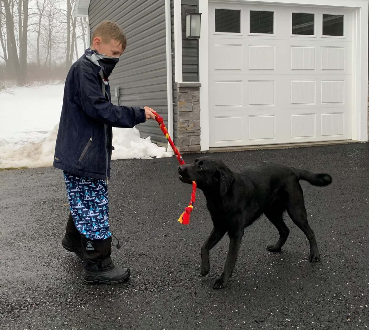Ryan playing with a dog with his pup tugs