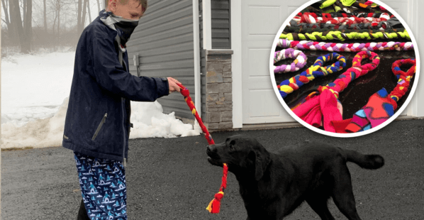 5th Grader Makes Toys to Help Dogs