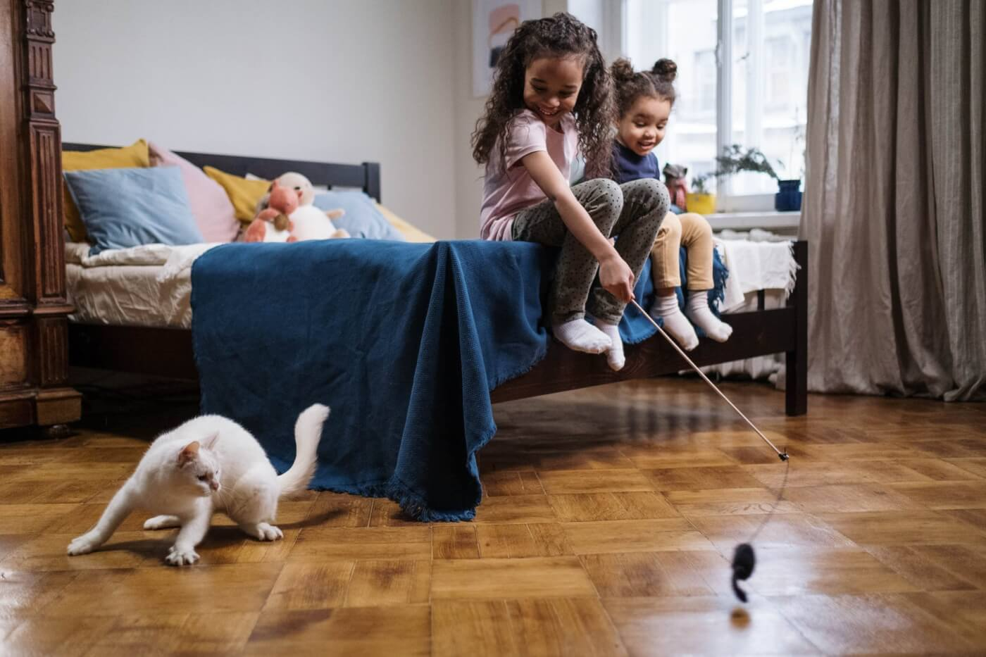 kids playing with cat