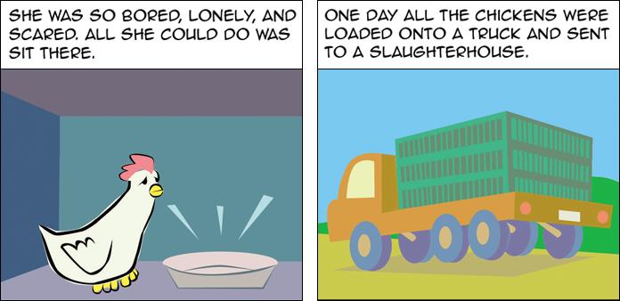 chickens-life-slide-21