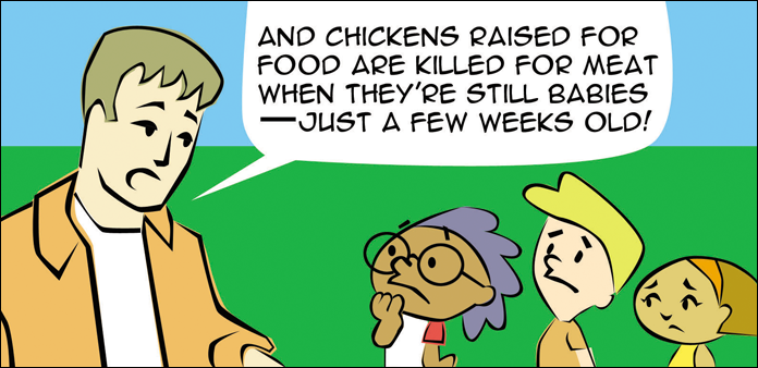 chickens-life-slide-37