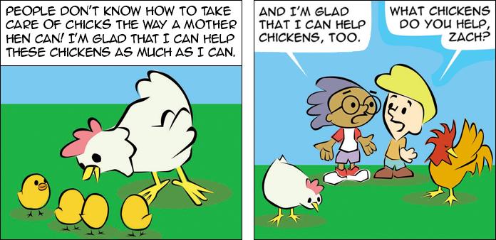 chickens-life-slide-44