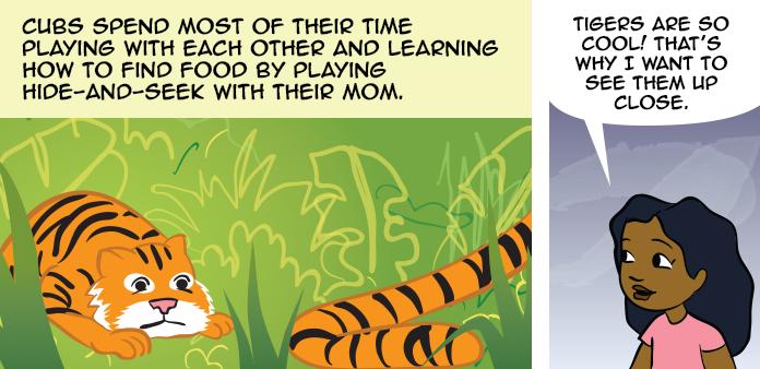 tigers-life-slide-20